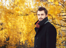 Portrait de l'homme barbu bel portant un manteau noir en automne Photos stock