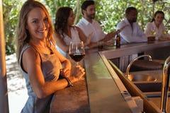 Portrait de la femme de sourire ayant un verre de vin rouge au compteur Photos stock