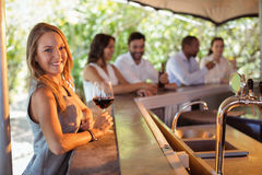 Portrait de la femme de sourire ayant un verre de vin rouge au compteur Photo libre de droits