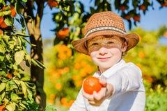 Portrait de la jeune cueillette mignonne attrayante de garçon Photo stock