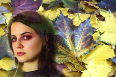 Portrait de la jeune femme avec les yeux verts dans la perspective des feuilles d'automne image stock