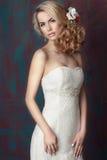 Portrait de la jeune mariée Photographie stock