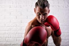 Portrait de la position belle d'homme de boxeur sur le mur bric et de regarder la cam?ra avec le regard fixe intense photos libres de droits