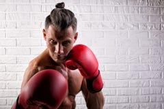 Portrait de la position belle d'homme de boxeur sur le mur bric et de regarder la cam?ra avec le regard fixe intense photos stock
