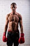 Portrait de la position belle d'homme de boxeur sur le mur bric et de regarder la cam?ra avec le regard fixe intense image libre de droits