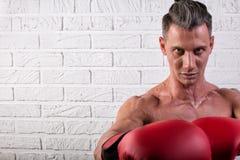 Portrait de la position belle d'homme de boxeur sur le mur bric et de regarder la cam?ra avec le regard fixe intense photo libre de droits