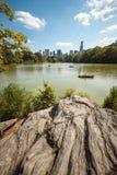 Portrait de lac central Park de NYC Photographie stock