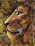 Portrait de lion dans le charbon de bois et le pastel Photos stock
