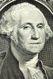 Portrait de macro de George Washington Photo libre de droits