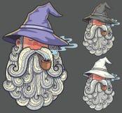 Portrait 2 de magicien illustration stock