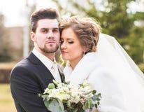 Portrait de marié et de jeune mariée images libres de droits