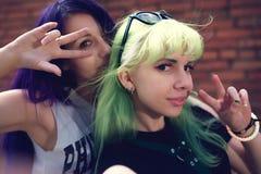 Portrait de mode de vie de mode de plan rapproché de deux amis assez beaux de jeunes avec des cheveux de couleur faisant le selfi Photo stock
