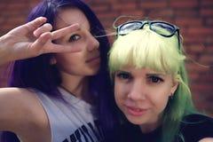 Portrait de mode de vie de mode de plan rapproché de deux amis assez beaux de jeunes avec des cheveux de couleur faisant le selfi Photo libre de droits