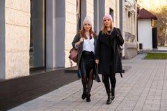 Portrait de mode de vie de mode images libres de droits