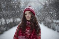 Portrait de Noël de beauté Image stock