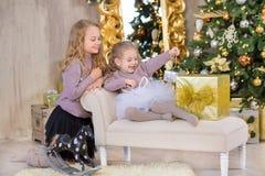 Portrait de Noël de deux amies de sourire de soeurs de filles mignonnes beautyful et d'arbre blanc vert de luxe de Noël dans le s Image libre de droits