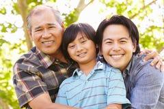 Portrait de père, de grand-père et de fils images stock