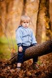 Portrait de petit garçon en parc d'automne Photos libres de droits