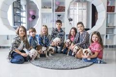 Portrait de petits enfants avec les chiots mignons sur le plancher à la maison Image stock