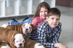 Portrait de petits enfants avec les chiots mignons sur le plancher Image stock