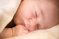 Portrait de plan rapproché de bébé nouveau-né Image stock