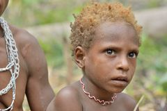 Portrait de plan rapproché de petit garçon de Papuan non identifié de tribu de Korowai Images libres de droits