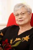 Portrait de dame pluse âgé Images libres de droits