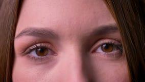Portrait de plan rapproché des yeux de femme observant directement dans la caméra exprimant le calme banque de vidéos