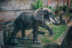 Portrait de plan rapproché de sculpture animale traditionnelle bouddhiste indoue photos stock