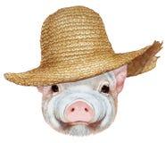 Portrait de porcin avec le chapeau de paille illustration stock