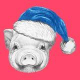 Portrait de porcin avec Santa Hat Photos libres de droits