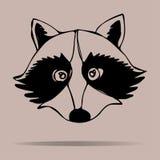 Portrait de raton laveur Illustration de vecteur Images libres de droits