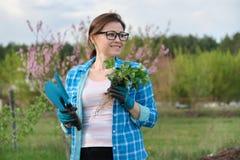 Portrait de ressort de femme m?re dans le jardin avec des outils, buissons de fraise photographie stock