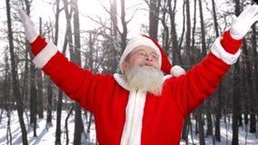 Portrait de Santa Claus authentique dehors clips vidéos