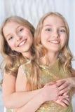 Portrait de soeurs jumelles mignonnes Image stock