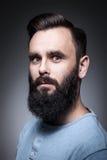 Portrait de studio d'homme barbu élégant ; Image libre de droits