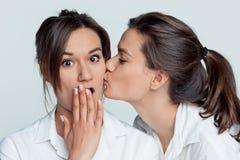 Portrait de studio des jumeaux féminins Image libre de droits