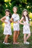 Portrait de trois amies Photo libre de droits
