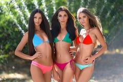 Portrait de trois belles filles sexy sur la plage Photos libres de droits