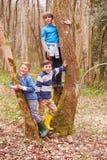 Portrait de trois garçons jouant le jeu dans la forêt Photo stock