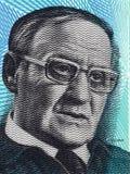 Portrait de Vaino Linna d'argent finlandais Image libre de droits