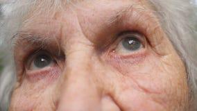 Portrait de vieille grand-mère recherchant Fermez-vous vers le haut des yeux d'une femme agée avec des rides autour de elles clips vidéos
