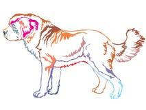 Portrait debout décoratif coloré de vecteur de St Bernard Dog Illustration Stock