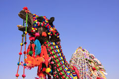 Portrait of decorated camel at Desert Festival, Jaisalmer, India Stock Photography