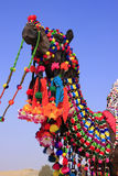 Portrait of decorated camel at Desert Festival, Jaisalmer, India Stock Image