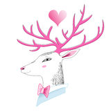 Portrait of a deer. Graphics funny portrait of a deer on a white background Royalty Free Stock Photography