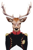Portrait of Deer in military uniform. Royalty Free Stock Image