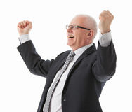 Portrait of a delighted mature businessman Stock Image
