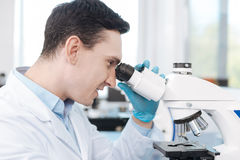 Portrait of delighted scientist while testing genetic code. Attention please. Attractive young man sitting in semi position while working in the laboratory and Royalty Free Stock Photography