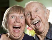 Portrait der älteren Paare Stockfoto